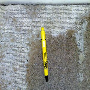 Damage to carpet from Carpet Beetles