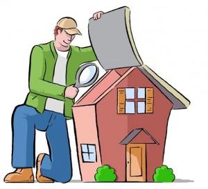 Home Inspection Cartoon