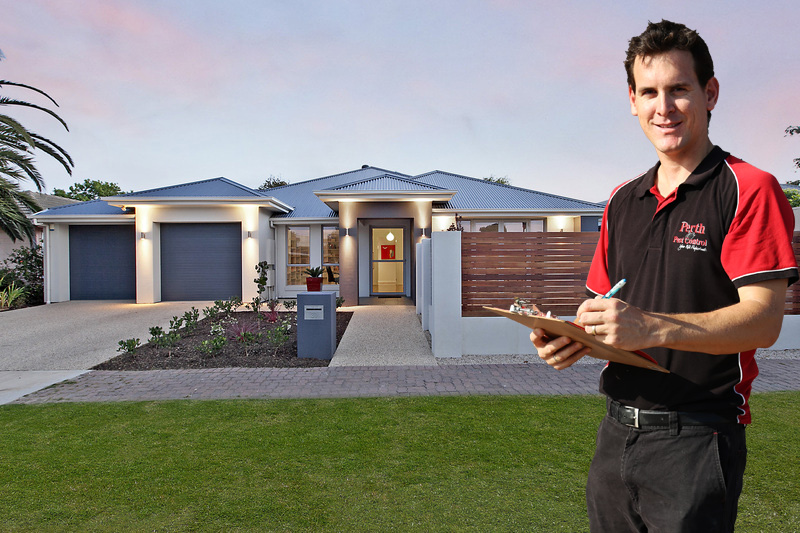 pre-purchase timber inspection - House timber inspection
