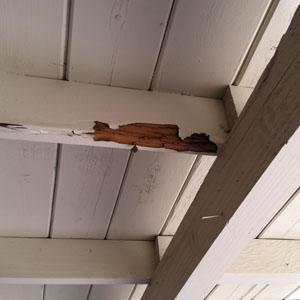 Floor beams damaged by termites