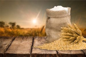 Stored product pests - grain